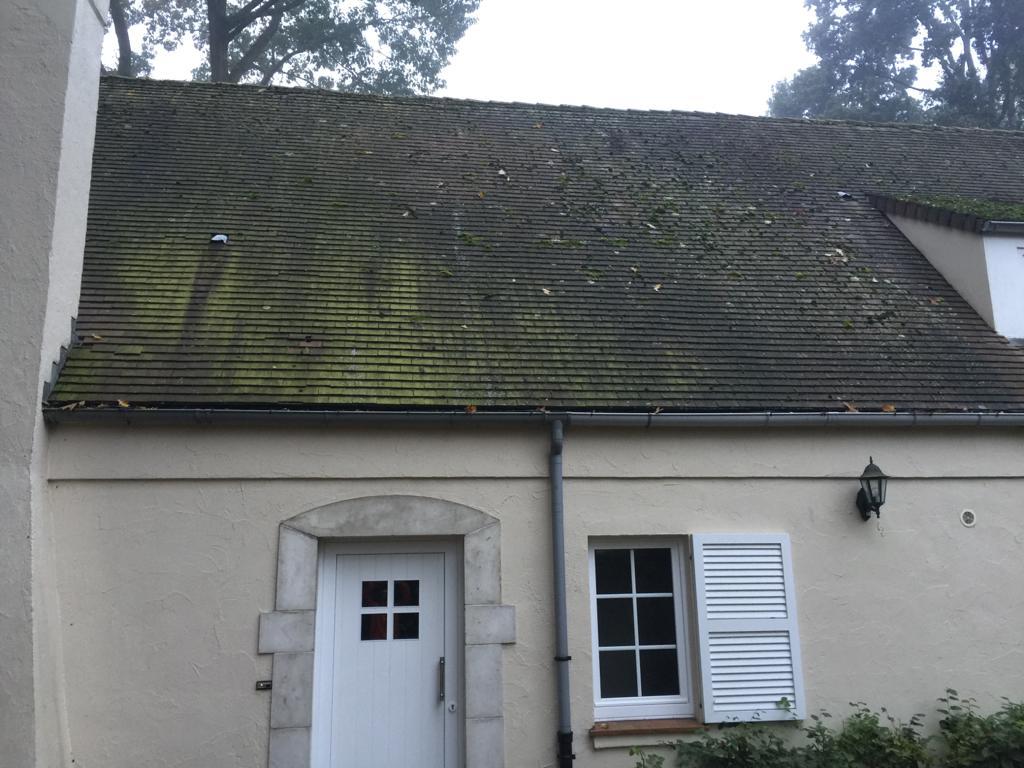 toit recouvert de mousse qui doit être traité par nos experts