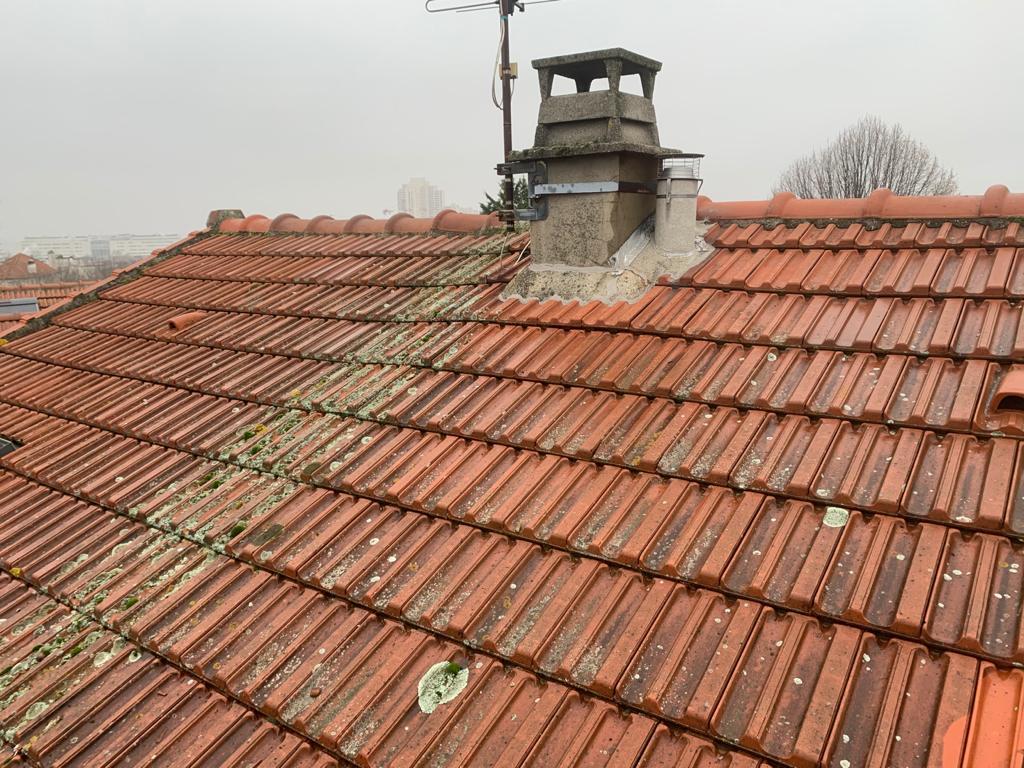 toit recouvert de mousse à clamart