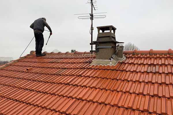 démoussage et nettoyage de toit, clamart, 92 et Paris
